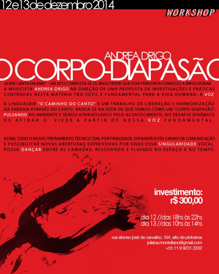 flyer_workshop_drigo